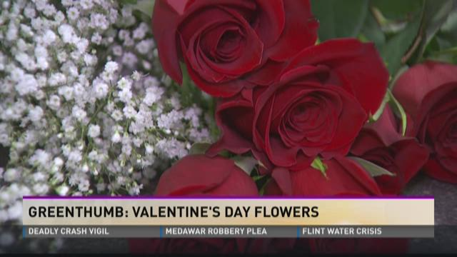 Greenthumb: Valentine's Day Flowers