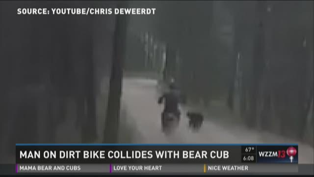 Dirt-bike rider's crash with bear cub caught on camera