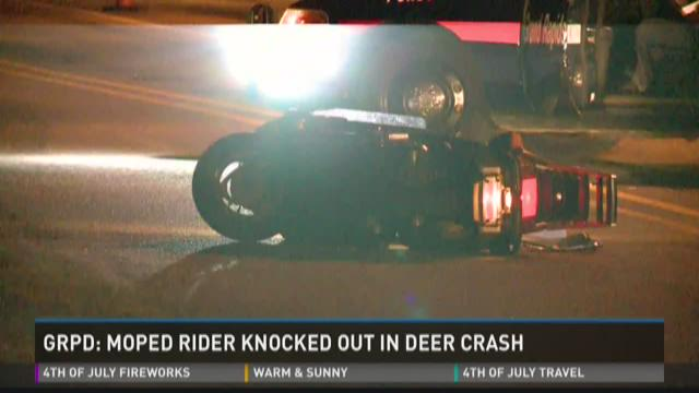 Man recovering after hitting deer on moped