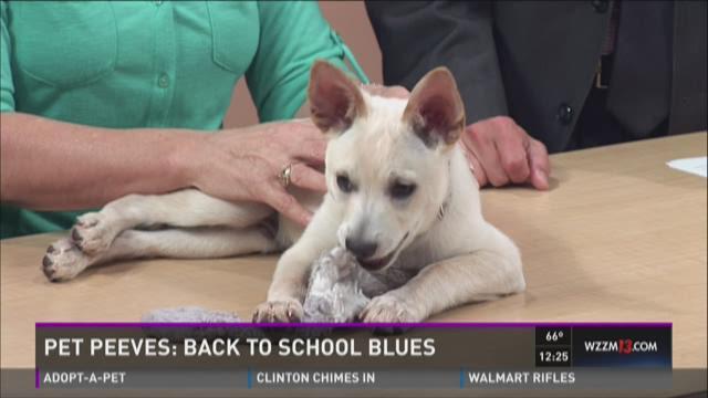 Pet Peeves: Back to school blues