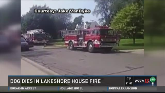 Dog dies in Spring Lake house fire