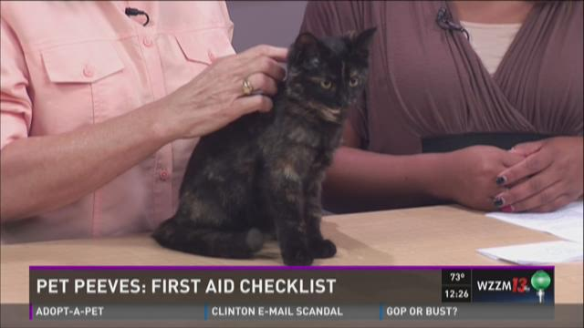 Pet Peeves: First aid checklist
